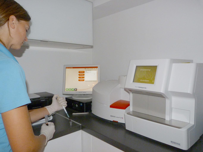 Labordiagnostik